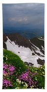 The Alps Wildflowers Beach Towel