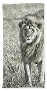 The King Stands Tall Beach Towel