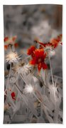 Wildflowers Of The Dunes Beach Towel