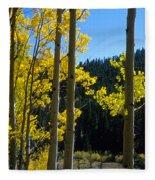 Aspen Vista Fleece Blanket