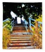 Manayunk Steps Fleece Blanket