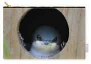 Barn Swallow Chick Carry-all Pouch by DigiArt Diaries by Vicky B Fuller