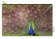 Peacock Carry-all Pouch by Carlos Caetano