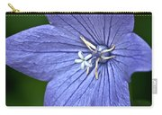 Purple Balloon Flower Carry-all Pouch