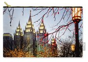 Slc Temple Lights Lamp Carry-all Pouch