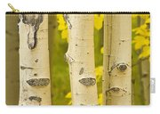 Three Autumn Aspens Carry-all Pouch by James BO  Insogna