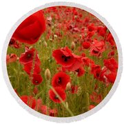 Red Poppies 4 Round Beach Towel
