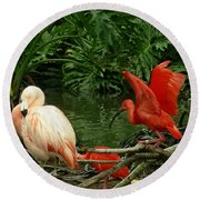 Flamingo And Scarlet Ibis Round Beach Towel