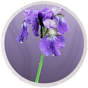Wet Russian Iris Round Beach Towel