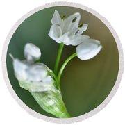 White Blossom 3 Round Beach Towel