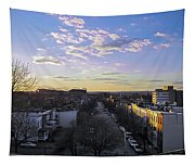Sunset Row Homes Tapestry