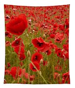 Red Poppies 4 Tapestry