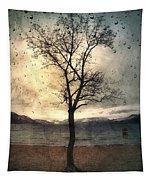 January 12 2010 Tapestry