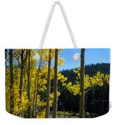 Aspen Vista Weekender Tote Bag