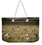 Herd Of Antelope Weekender Tote Bag by Darcy Michaelchuk