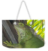 Iguana Puerto Rico Weekender Tote Bag