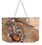 Metallic Weekender Tote Bag