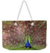 Peacock Weekender Tote Bag by Carlos Caetano