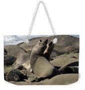 Seal Duet Weekender Tote Bag