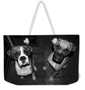 The Cat Did It Weekender Tote Bag by DigiArt Diaries by Vicky B Fuller