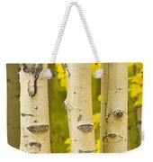 Three Autumn Aspens Weekender Tote Bag by James BO  Insogna