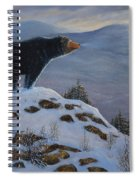 Last Look Black Bear Spiral Notebook