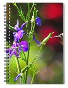 Springtime Hummer Spiral Notebook