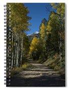 Aspen Lane Spiral Notebook