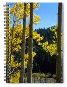 Aspen Vista Spiral Notebook