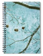 Branched Spiral Notebook