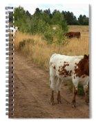 Colorado Calf Spiral Notebook