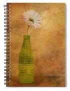 February 10 2010 Spiral Notebook