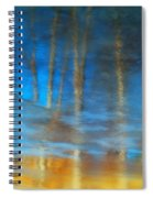 Ice Reflections Spiral Notebook