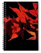 Leaves Of Red Spiral Notebook