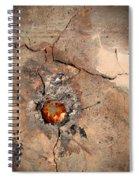 Metallic Spiral Notebook