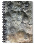 Softstone Spiral Notebook