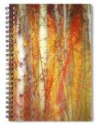Strange Forest Spiral Notebook