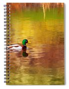 Swimming In Reflections Spiral Notebook