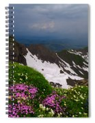 The Alps Wildflowers Spiral Notebook