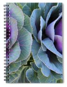 The Cabbage Patch Spiral Notebook