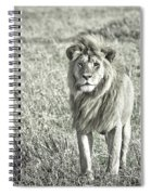 The King Stands Tall Spiral Notebook