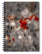 Wildflowers Of The Dunes Spiral Notebook