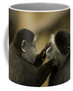 A Blue Monkey Cercopithecus Mitis Coffee Mug by Joel Sartore