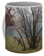 A White-tailed Deer Forages Coffee Mug by Raymond Gehman