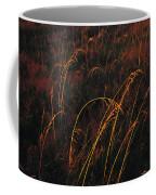 Grasses Glow Golden In Evenings Light Coffee Mug by Raymond Gehman