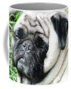 Mug Zee Coffee Mug