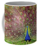 Peacock Coffee Mug by Carlos Caetano