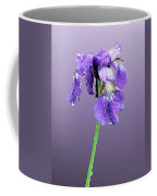 Wet Russian Iris Coffee Mug