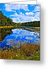 Early Autumn At Fly Pond - Old Forge Ny Greeting Card by David Patterson
