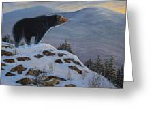 Last Look Black Bear Greeting Card
